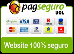Pagseguro 300x218 -