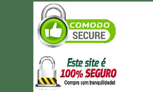 site100seguro -
